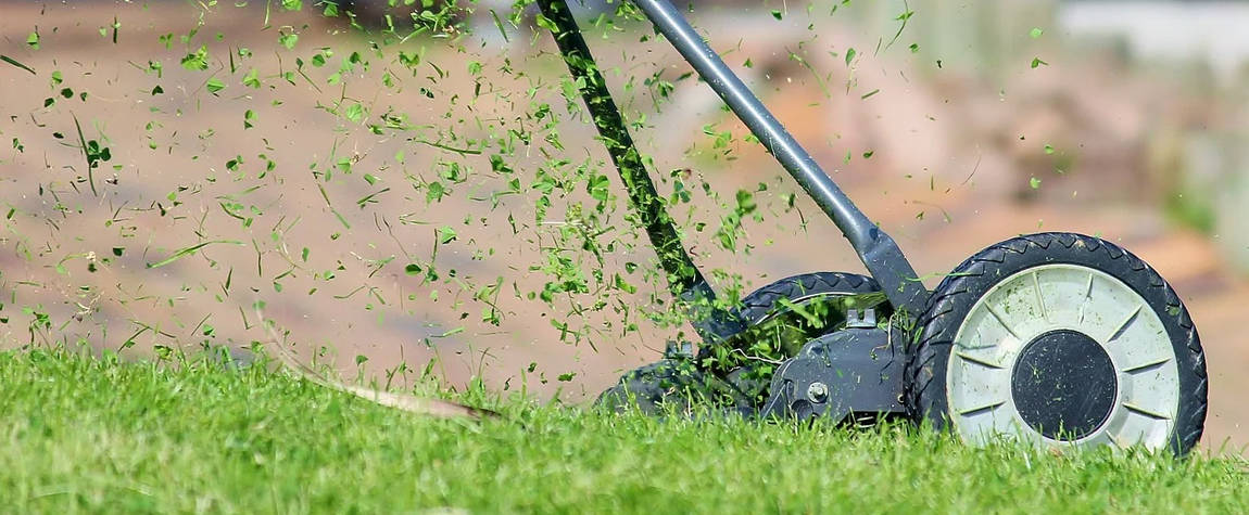 Push lawn mower cutting grass - Outdoor Power Equipment statistics