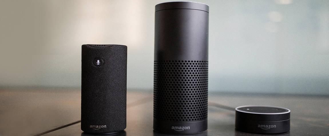 Smart Speaker - Amazon versus Google Market Share Insight