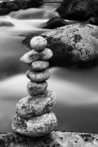 Zen minds